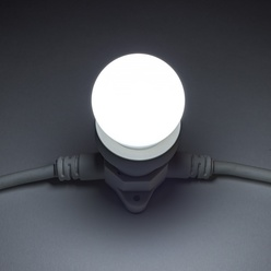 decoLED LED Licht birne - cool weiß, steckdose E27, 12 dioden